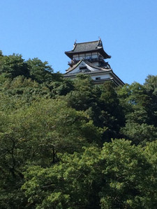 Inuyama_castle